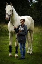 Уран - голубоглазая лошадь. Ищем новый дом